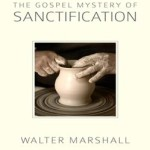 """The Most Important Book on Sanctification Ever Written"""